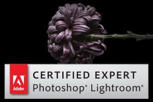 Adobe Lightroom Expert